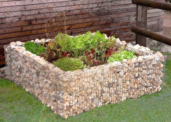 gabion-raised-bed-hortiterapia